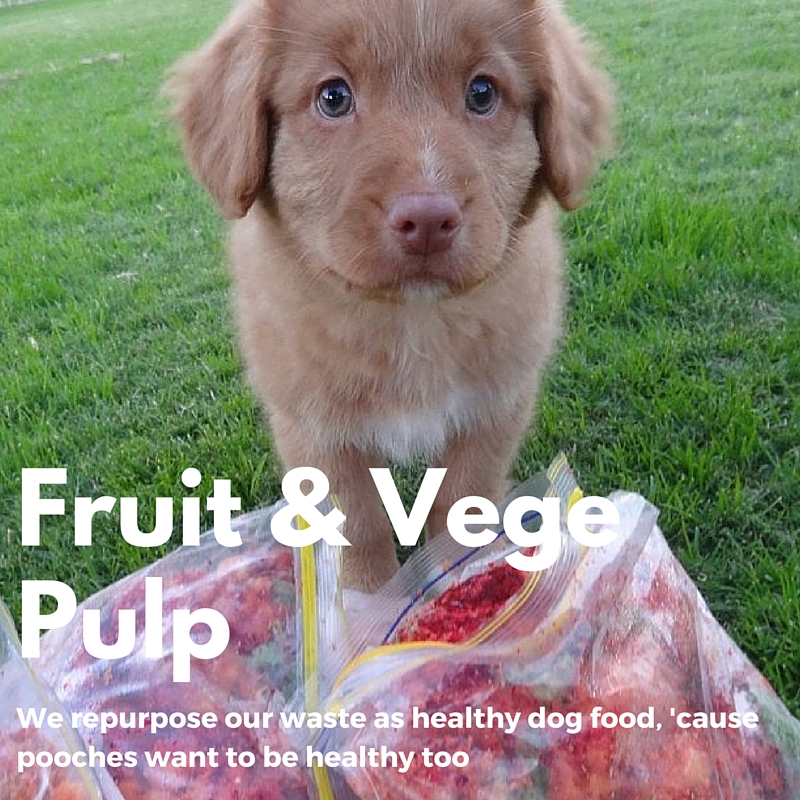 fruit-juice-puppy-perth.jpg